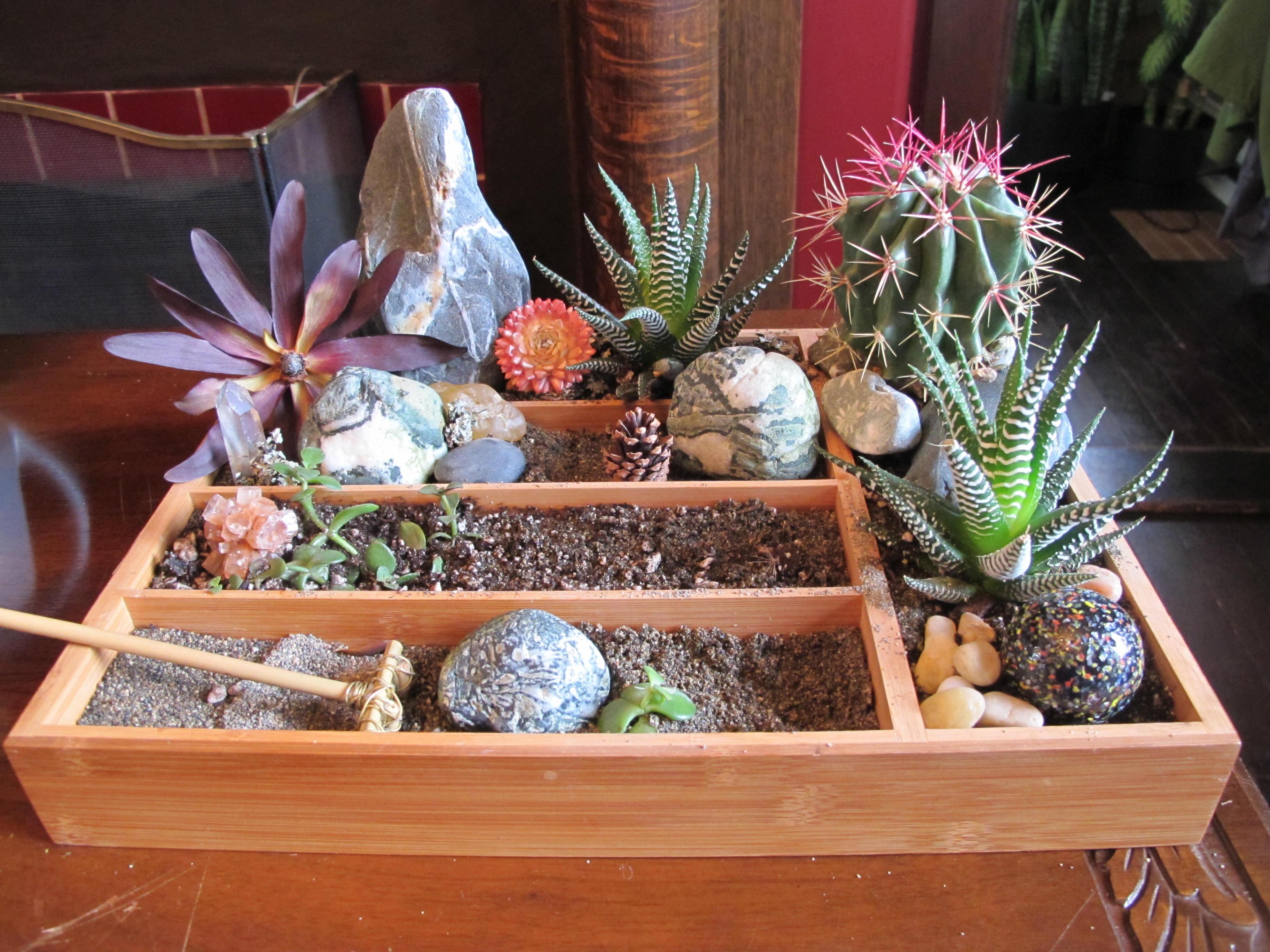 table top gardens biophilia